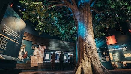 Image 031317 Liberty Tree Galleries 2017 03 13 M Ar Bluecadet Press Shots King5097